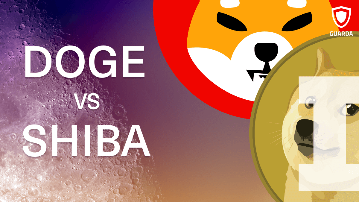The Difference Between Shiba Inu Token and Dogecoin